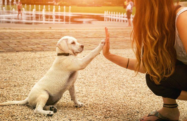 Building relationships of trust